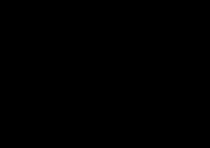 菊の黒い線画素材